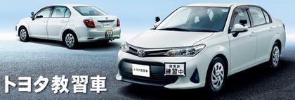 トヨタ教習車.jpg